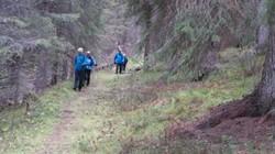 Allmannveien ned i lia mot Tylldalen hvor den er sterk og god i perioder. Fra sletta nedenfor Tylldalsutsikten er den noe  smal men den blir fort mye bedre nede i la.